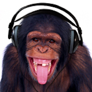 MOTUnation com • High Sierra 10 13 1 download